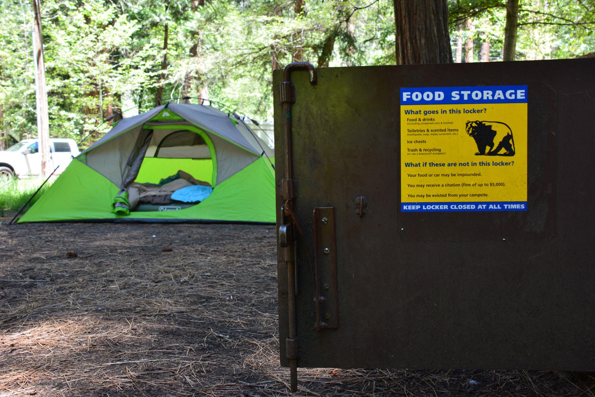 Ivonne - Wildkamperen, Verenigde Staten