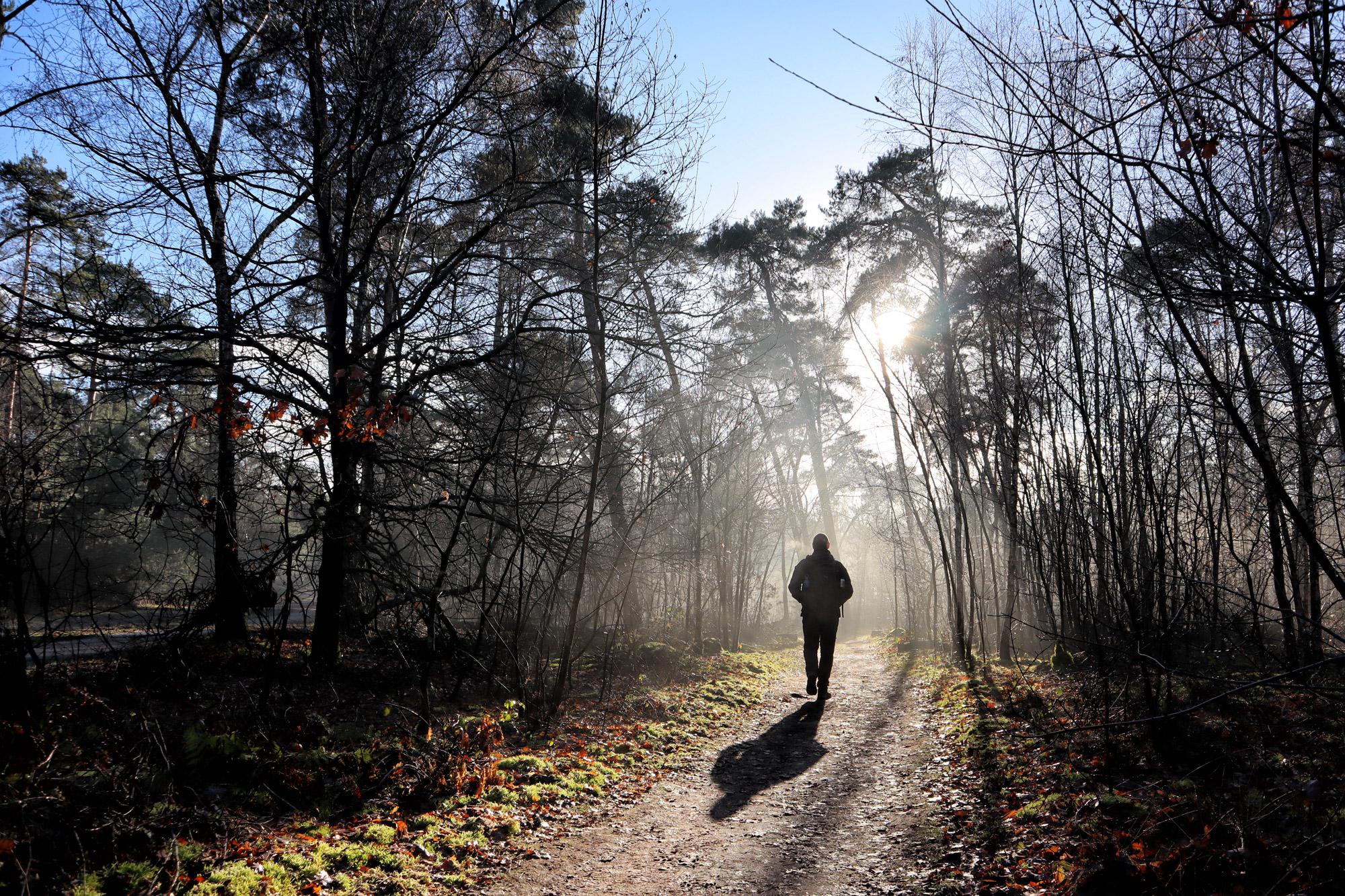 Wandelen in Noord-Brabant: Oirschotse Bossen en Vennen