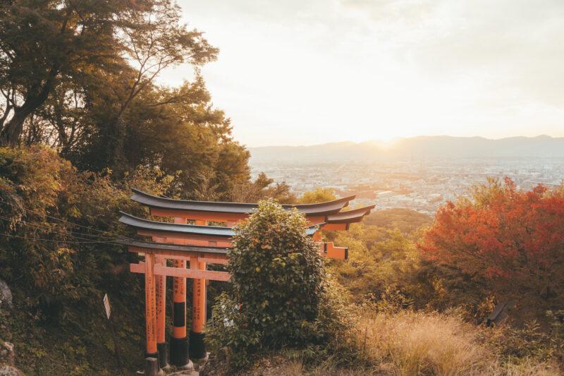 Maaike - Japan