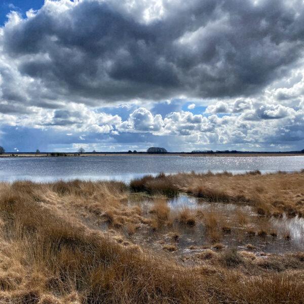 Nationaal Park Dwingelderveld - Nederland