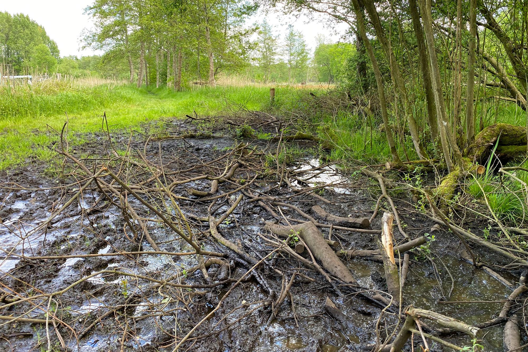 Wandelen in Noord-Brabant - Rulse Laarzenpad