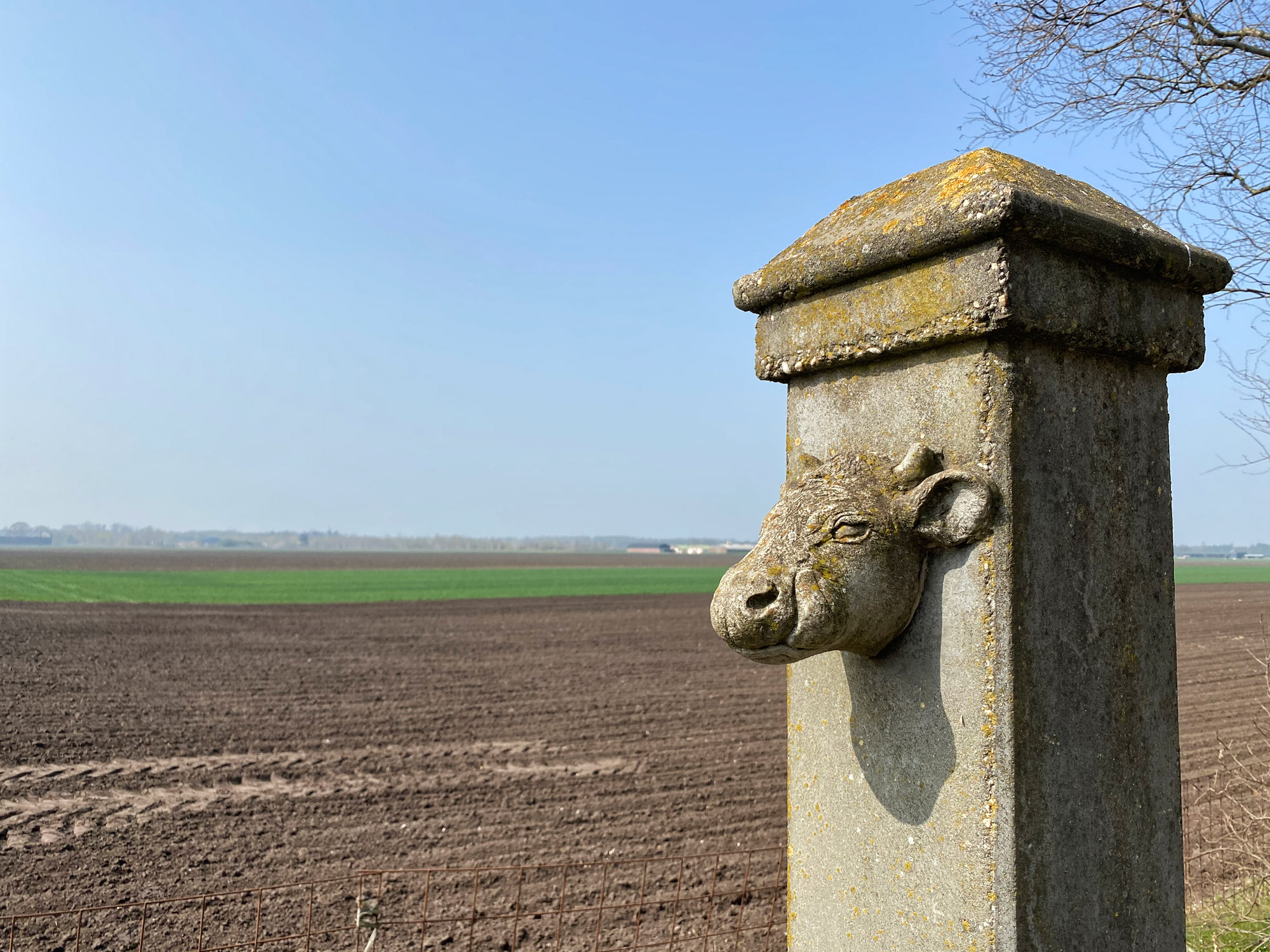 Wandelen in Noord-Brabant: Natuur bij Sterksel