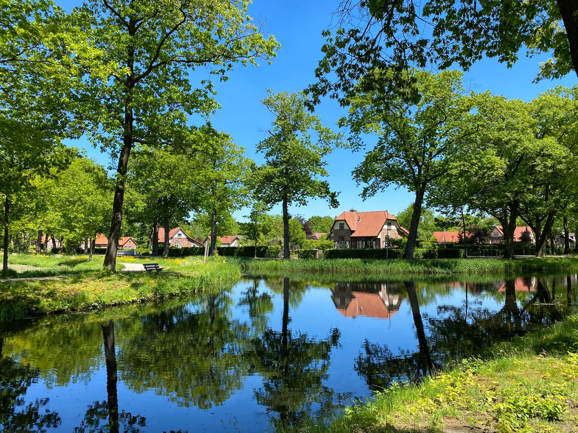Wandelen in Noord-Brabant en Limburg: Rondje Griendtsveen
