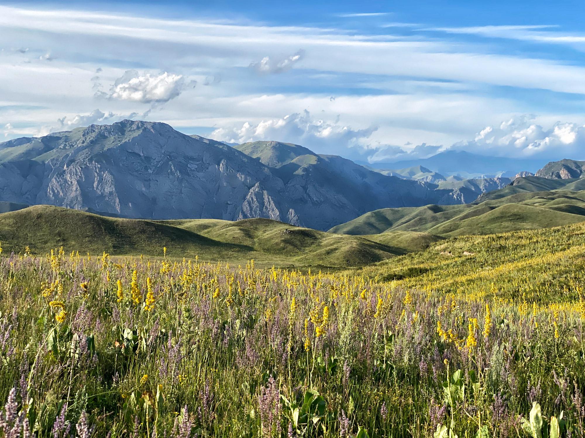 Reisroute Kirgizië - Kaldamo Pass